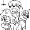 printable paw patrol colouring clip art library zuma coloring dc6aagbmi specialty pencils coloring pages Zuma Paw Patrol Coloring Page