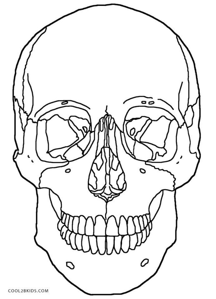printable skulls coloring for kids skull anatomy easter arts and crafts snowman to color coloring pages Skull Coloring Page