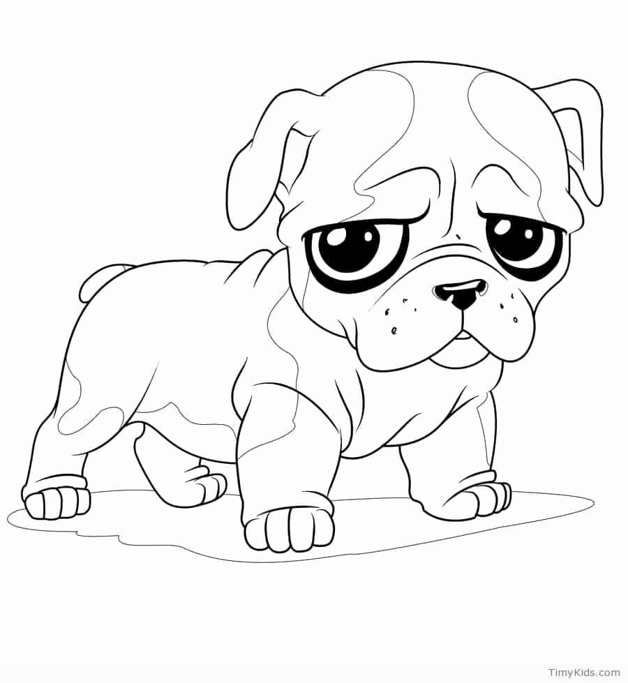 realistic kitten and puppy coloring neupinavers cute color sheet for toddlers paint can coloring pages Cute Puppy Coloring Page