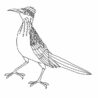 roadrunner coloring coloring72 comets and asteroids drawings cute animal sheets coloring pages Roadrunner Coloring Page