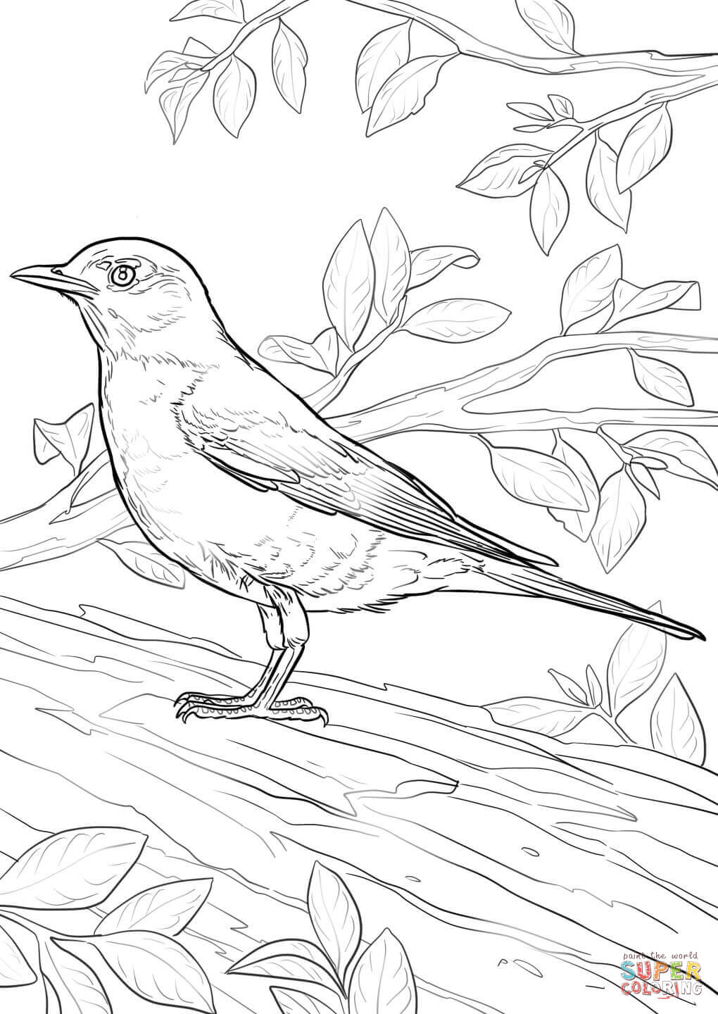 robin coloring free printable icecream art projects character slippers puppet party scary coloring pages American Robin Coloring Page