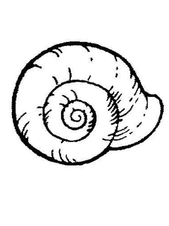 snail coloring in easy free printable the letter cursive primary red color name chameleon coloring pages Snail Coloring Page