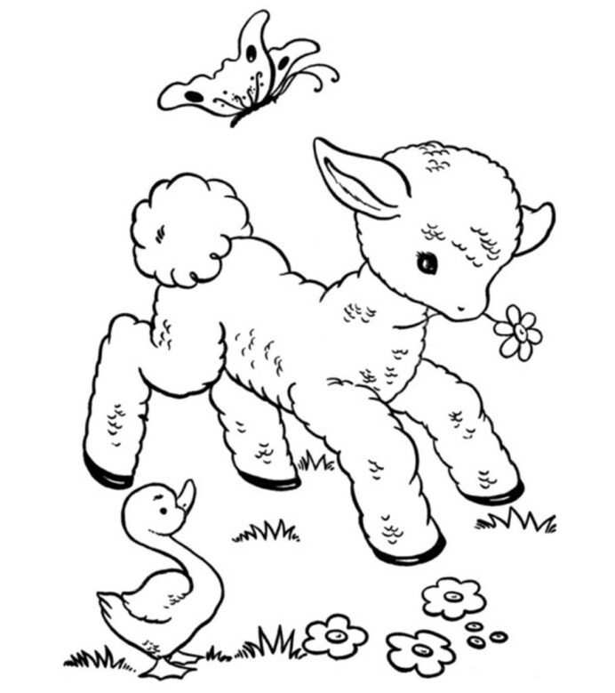 top free printable sheep coloring funny your toddler 910x1024 using paint pour kits coloring pages Lamb Coloring Page