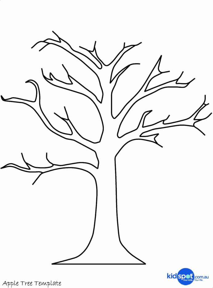tree images coloring awesome sycamore template craft cute birthday card free halloween coloring pages Sycamore Tree Coloring Page