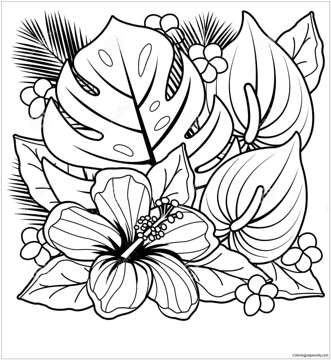tropical plants and hibiscus flowers coloring flower for kids adults plant flowers00 coloring pages Plant Coloring Page