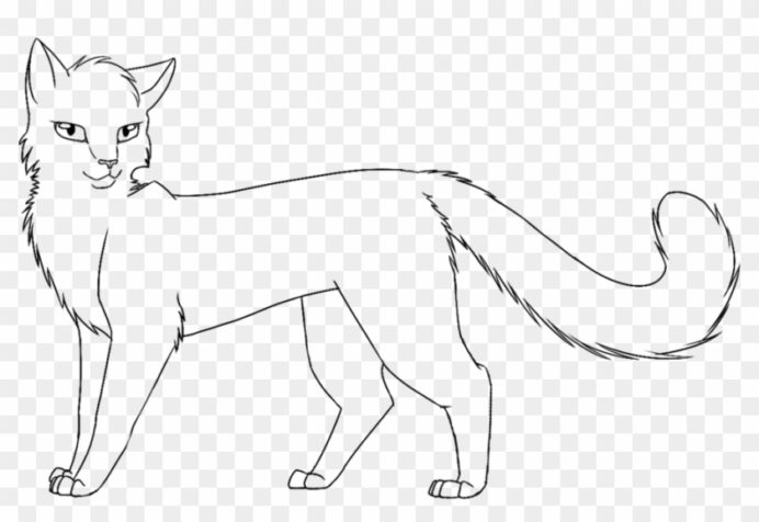 warrior cats coloring idea whitesbelfast cat magic water painting cursive uppercase coloring pages Warrior Cat Coloring Page