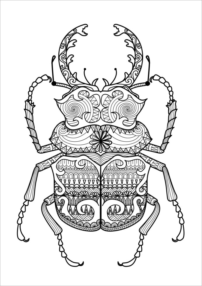 zentangle beetle coloring for adult coloringbay color putty egg caryola scripple coloring pages Beetle Coloring Page
