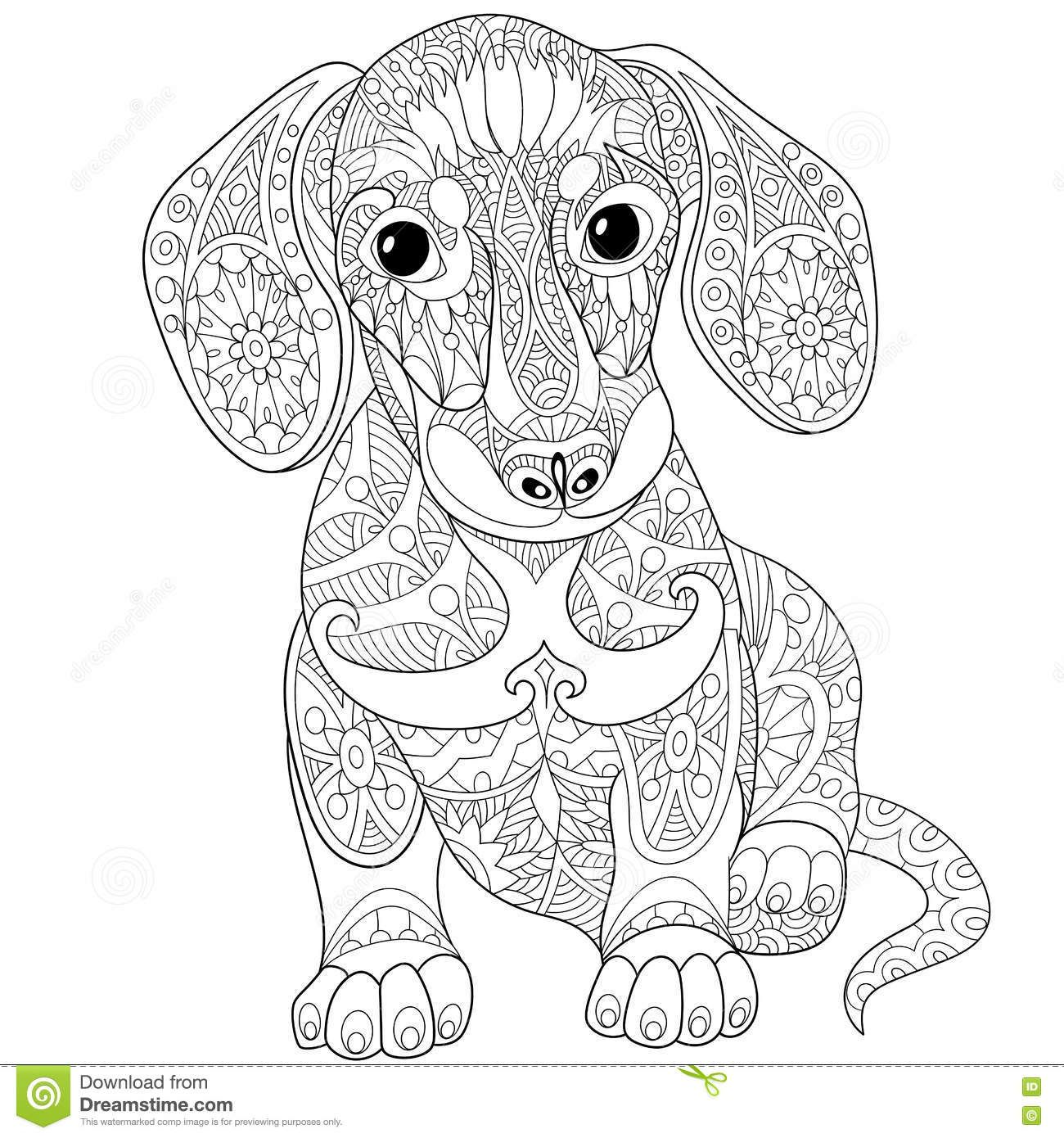 zentangle stylized dachshund dog from over million high quality stock photos images ve coloring pages Weiner Dog Coloring Page